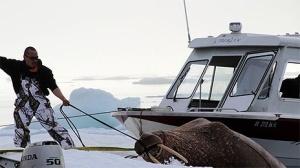 Pesca e caça são parte vital do modo de vida em Point Hope (Foto: May Abdalla)