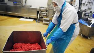Carne de cavalo foi encontrada em produtos vendidos em diversos países da Europa