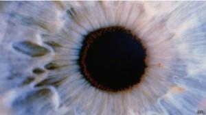 Sistema imunológico do olho é fraco, diminuino rejeição de transplante